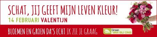 valentijn_530x125_statisch_logo.jpg
