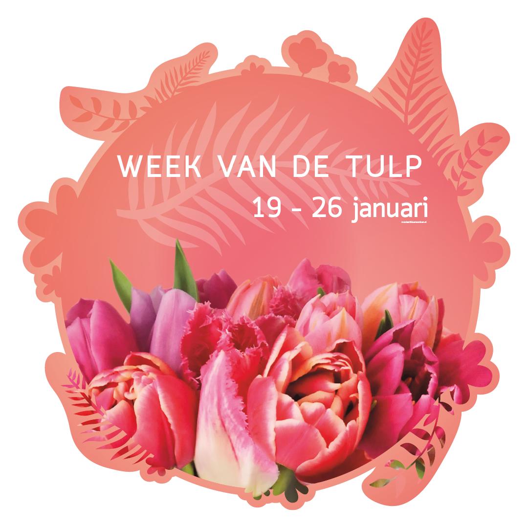 week van de tulp